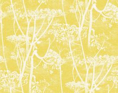 cole and son cow parsley yellow - Google Search