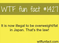 WTF Fun Facts is updated daily with interesting & funny random facts. We post about health, celebs/people, places, animals, history information and much more. New facts all day - every day! Wierd Facts, Wow Facts, Wtf Fun Facts, True Facts, Funny Facts, Random Facts, Crazy Facts, That's Weird, Strange Facts