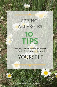 Spring allergies can be miserable! Here are 10 tips to soothe or prevent your allergies and get relief. Plus, how to tell if it's a cold or allergy? Spring Allergies, Cold Or Allergies, Kids Allergies, Pollen Allergies, Seasonal Allergies, Spring Allergy Symptoms, Allergy Relief Tips, Allergy Remedies, Health Remedies