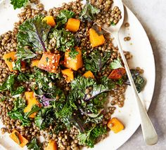 Puy lentils, squash & kale This hearty salad is iron-rich and full of autumn flavours - serve on its own or as a Sunday roast side dish Puy Lentil Salad, Lentil Salad Recipes, Vegetarian Recipes Lentils, Kale Recipes, Bbc Good Food Recipes, Healthy Salad Recipes, Cooking Recipes, Savoury Recipes, Vegan Recipes