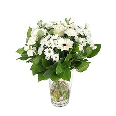 awesome Cloud of Daisy, Calgary Flowers - New Bouquet Cloud of Daisy by Calgary Flowers A puffy white cloud of daisy mums, daisies, and roses to lift the spirit and soothe the soul.  ,  http://sendflowerstocalgary.com/product/cloud-of-daisy/, 59.95