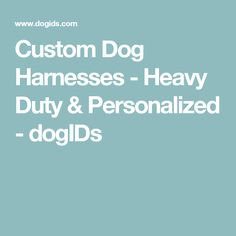 Custom Dog Harnesses - Heavy Duty & Personalized - dogIDs