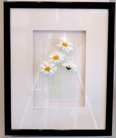 Daisies - Fused glass Panel | Flickr - Photo Sharing!