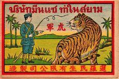 Thai Tiger by wackystuff, via Flickr