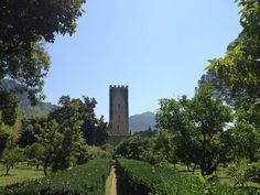 Garden of Ninfa in Lazio Day Trips From Rome, Easy Day, Monument Valley, Paths, Garden, Nature, Travel, Nymphs, Naturaleza