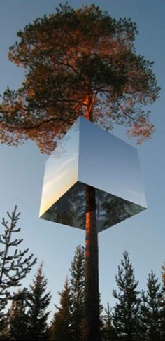 Swedish mirrored glass forest tree houses hotel.
