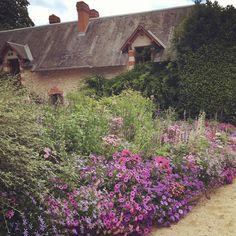 "@msomeara on Instagram: ""Beautiful borders at #chaumontsurloire #chaumontsurloirefestivaldesjardins"""