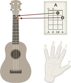 Ukulele Songs Popular, Ukulele Songs Beginner, Left Handed Ukulele, Ukulele Chords, Song Play, Diagram, Guitars, Music, Creative