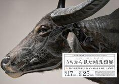 Composition of Mammals: Posters by Wataru Yoshida