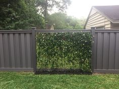 Vines Growing on Wire Mesh Panels with Winchester Grey Trex Fencing Trex Fencing, Garden Fencing, Backyard Fences, Vinyl Fence Colors, Vine Fence, Backyard String Lights, Patio Lanterns, Fence Planters, Building A Fence