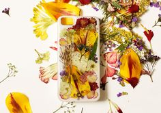 diy iphone 5 case dry flowers