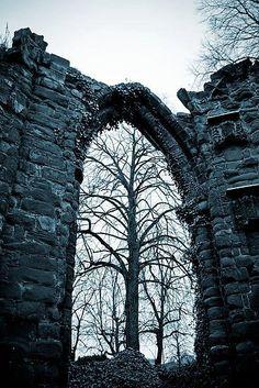 Tree Arch, St John's Church, Chester, England