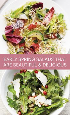 Early Spring Salads: Beautiful, Nutritious, and Deliciously Bitter | Martha Stewart Living - The best greens for salads right now? They're colorful, crunchy, healthy, and bitter, chicories like radicchio and escarole, milder endive and earthy dandelion greens. Learn how to make the most of their flavor in salads with substance.