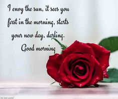 For you, I have collected the best good morning text messages for him and her that will make your loved ones day special with this good morning quotes and texts. Morning Poem, Morning Texts For Him, Cute Good Morning Texts, Good Morning Text Messages, Good Morning Roses, Morning Blessings, Morning Wish, Good Morning Images, Morning Quotes