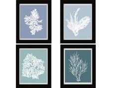 Antique Illustration White on Blue Sea Coral Print Set of Four 8x10, Coral Wall Art, Coral Print, Sealife print Blue 8x10 Prints