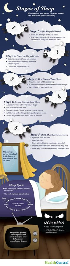 (INFOGRAPHIC) Stages of Sleep - Sleep Disorders. This is the normal person's sleep pattern. Idk really how my sleep pattern works but maybe this can be helpful for falling asleep and waking up Stages Of Sleep, Rem Sleep, How To Sleep, Sleep Studies, Sleep Dream, Sleep Schedule, Sleep Apnea, Good Night Sleep, Good To Know