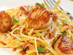 Carbonara with Pan Seared Scallops -perfectly seared scallops with pasta carbonara. dinner scallops Carbonara with Pan Seared Scallops Fish Recipes, Seafood Recipes, Gourmet Recipes, Cooking Recipes, Healthy Recipes, Clam Recipes, Recipies, Recipes Dinner, Holiday Recipes