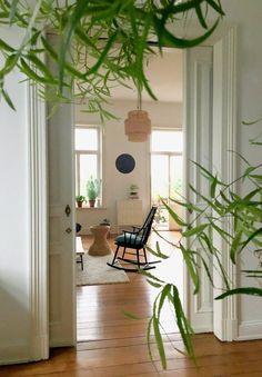 Mal ein anderer Blickwinkel vom Schlafzimmer, hinterm Riesen Asparagus, hindurch ins Wohnzimmer. An einem Morgen, kurz vorm Gewitter ☺️