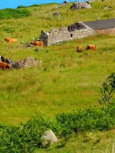 Cuaig, Wester Ross, Scottish Highlands, Scotland,UK