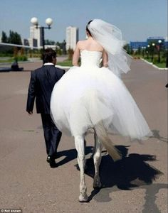 The unfortunate angles of one shot made it look like one groom was marrying a centaur