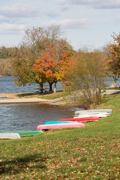 Marsh Creek State Park is in the rolling hills of north central Chester County. The 1,727-acre park contains the 535-acre Marsh Creek Lake, which is a wonderful resource for fishing, sailing and migrating waterfowl.