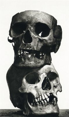 Irving Penn – The Poor Lovers, New York, 1979. this picture has texture and with the white background it makes the dark shaded skulls stand out.