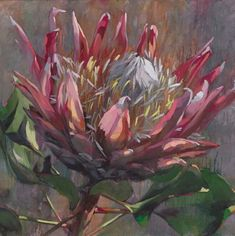 The beautifully painted image of South AFrica's national flower, The Protea painted by local artist Shaune Rogatschnig Protea Art, Protea Flower, Flowers, South African Art, Ink Drawings, Arte Floral, Whimsical Art, Botanical Art, Painting Inspiration