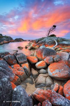 """Sunset over the Bay of Fires at Binalong Bay, Tasmania, Australia... """"Bay of Fires"""" by Jarrod Castaing Fine Art Photography #jarrodcastaing at www.jarrodcastaing.com"""