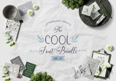 The Cool Font Bundle - 31 fonts for off - hurry and get your copy before this deal is over!