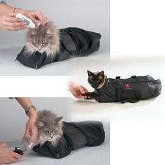 Cat Grooming Bag by Top Performance