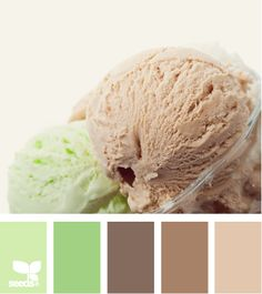 chilled tones...paint my living room shelves one of these colors of brown