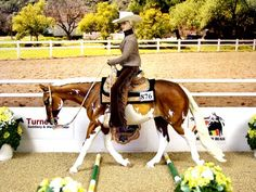Western Trail Class - Ground Poles - the model horse is looking down
