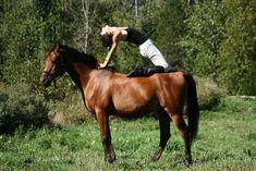 YOGA VOOR PAARDRIJDERS  Je kan best behoorlijk kortere hamstrings krijgen van paardrijden. Hier een mooie video over hoe je na het paardrijden deze krimp weer kan compenseren.