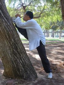 Cook Ding's Kitchen: External and Internal Stretching for Martial Arts