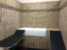 Option for a dog wash non slip ramp open front tub tray and spray 4 simple tips for dog grooming at home solutioingenieria Image collections