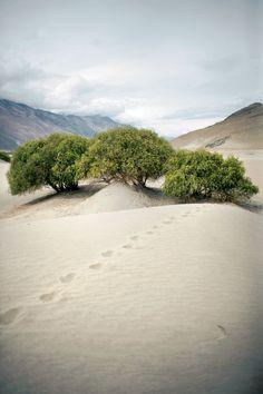 A highland desert above the Wakhan Valley. Tajikistan