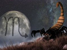 How Will You Die According To Your Zodiac Sign?