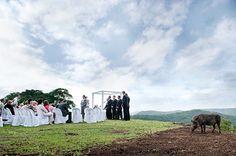 J&G008-southboundbride-elegant-bush-wedding-zulu-nyala-jacki-bruniquel