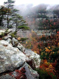 Cloudland Canyon State Park, Georgia, USA A hidden gem.