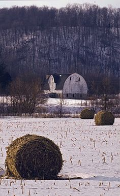 Wisconsin barn- Barns of the Midwest by Ernest J. Schweit**
