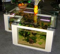 Aquarium Furniture: Creative Coffee Table Aquarium