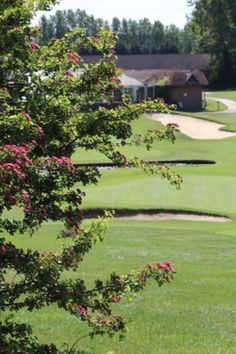 Spend your wedding day in a lovely venue with green fields and a warm atmosphere! The Upchurch River Valley Golf Course is the perfect location for the ceremony and reception. Think green !! #thinkgreen #weddingmagazine #weddingdirectory #weddingvenue #weddingplanner #weddingdesigner #outsideweddings River Restaurant, Wedding Venues, Wedding Day, Country House Hotels, Wedding Function, Green Fields, Outside Wedding, Wedding Designs, Wedding Planner