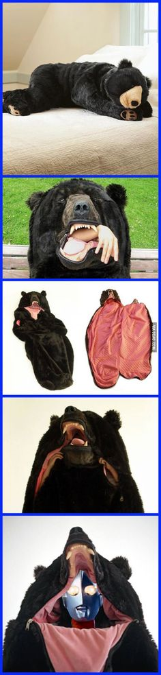 A Bear Sleeping Bag More