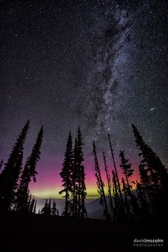 look up and be amazed Gods Creation, Heaven On Earth, Looking Up, Northern Lights, Amazing, Nature, Travel, Naturaleza, Viajes