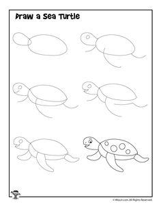 how to draw a sea turtle handout classroom pinterest art