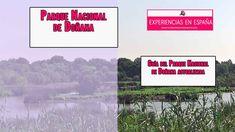Seguimos con las guías de los Parques Nacionales de España que tanto gustan entre nuestros lectores. Hoy vamos a dedicar este artículo guía, al Parque Nacional de Doñana. ¿Te interesa?, pues sigue leyendo. Desktop Screenshot, Lets Go
