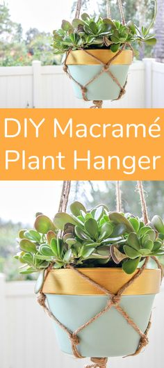 DIY Macramé Plant Hanger for First Time Makers