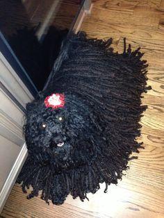 My ZaZa Puli Dog, Wreaths, Halloween, Dogs, Home Decor, Decoration Home, Door Wreaths, Room Decor, Pet Dogs