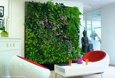 Marie Nieves explains how to build and design a sustainable green wall for interior decor.