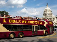 See all the sights of the Nation's Capital on this hop on hop off tour